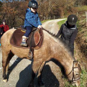 Spa_pyrenees_nuit_insolite_perchoir_des_pyrenees_Bapteme_poney